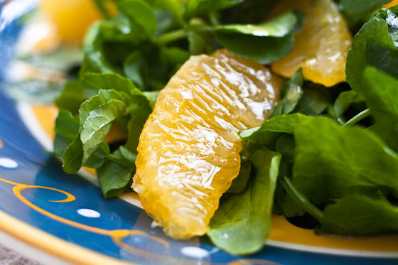 Watercress Salad close