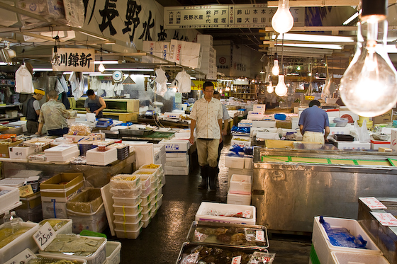 Tsukiji Fish Market-2