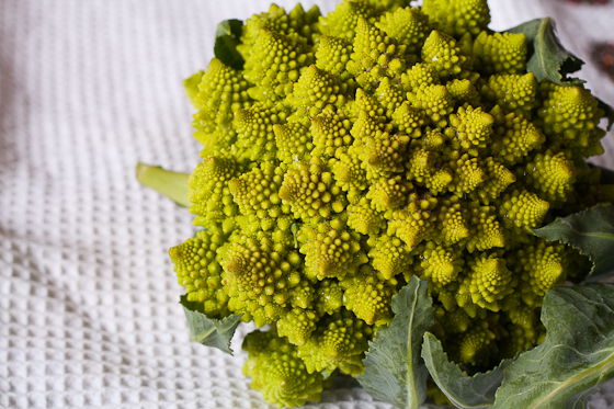 broccoli romanesco Garlic Scape Lemon Pasta: Taste of Spring!